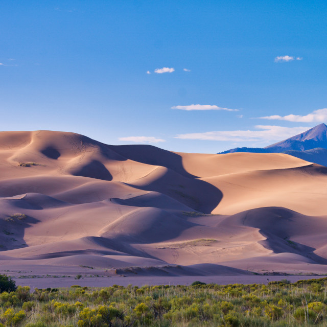 """Colorado Sand Dunes"" stock image"