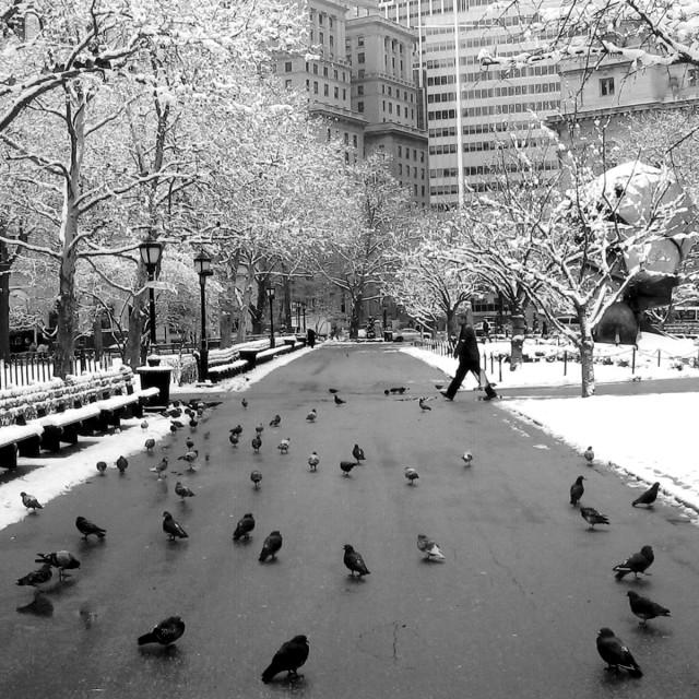 """Snowy Manhattan"" stock image"