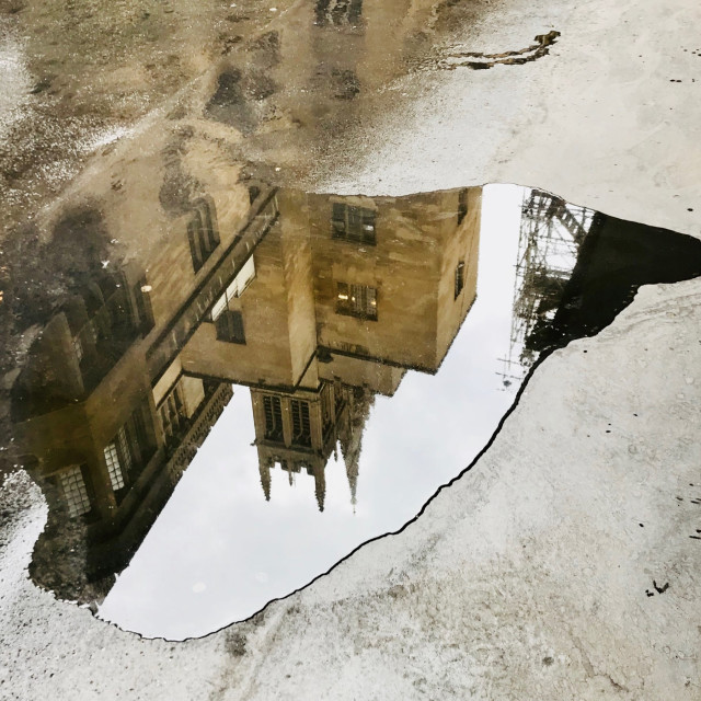 """""""Parliamentary puddle"""" stock image"""