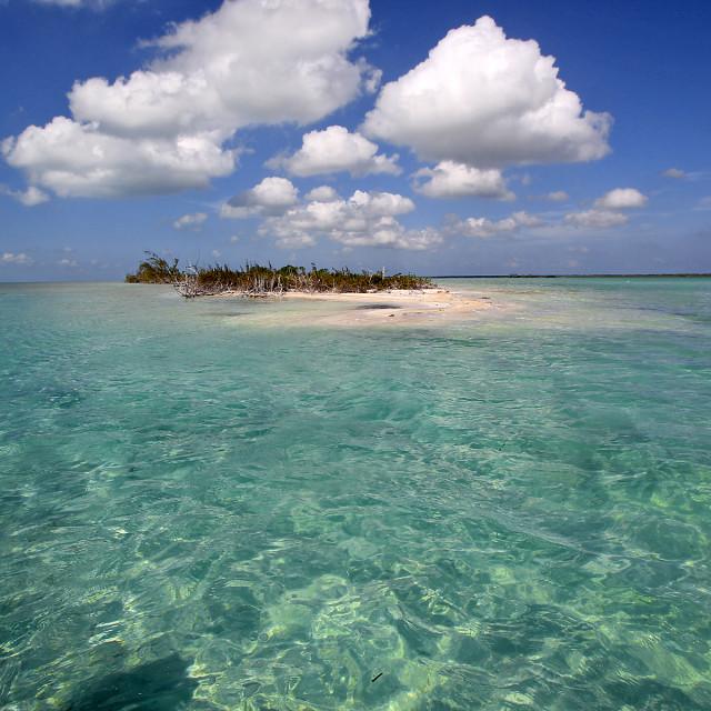 """Espiritu Bay, Mexico"" stock image"