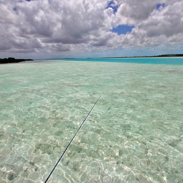 """Flats, Andros , Bahamas"" stock image"