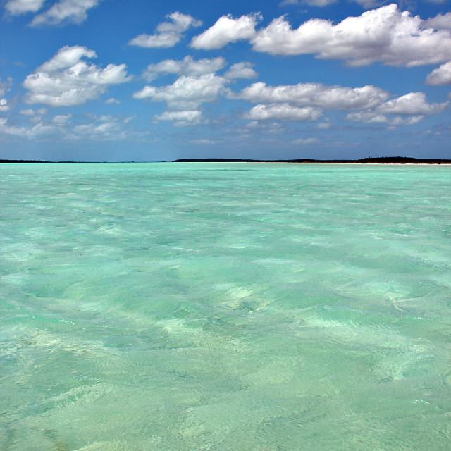 """Flat, Andros,Bahamas"" stock image"