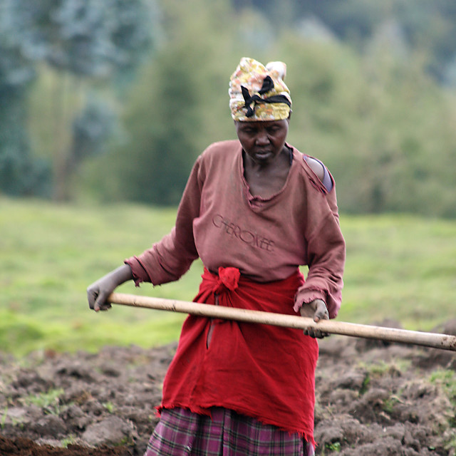 """Woman with hoe, Rwanda, Africa"" stock image"