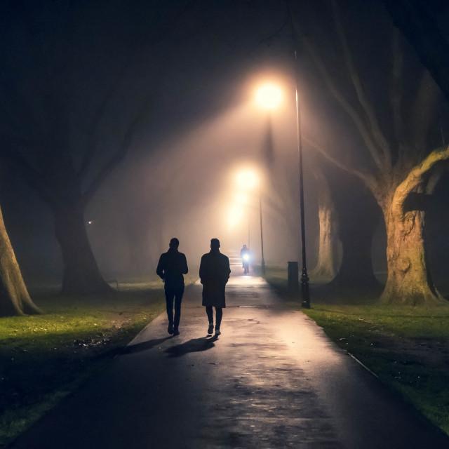 """Silhouettes from Jesus Green, Cambridge UK."" stock image"