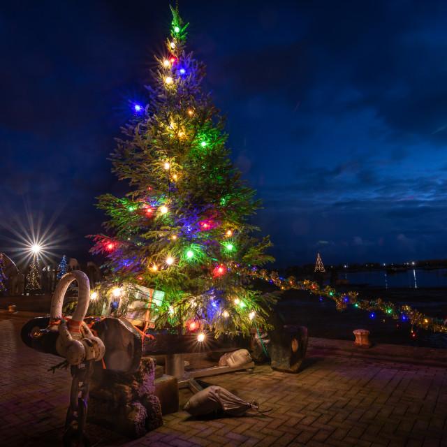 """Christmas Tree on the hard"" stock image"