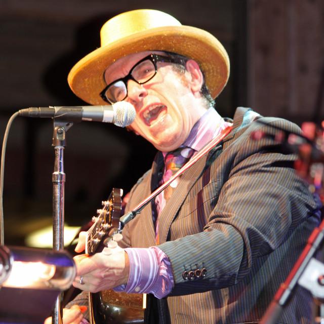 """Elvis Costello, Merlefest 2010"" stock image"