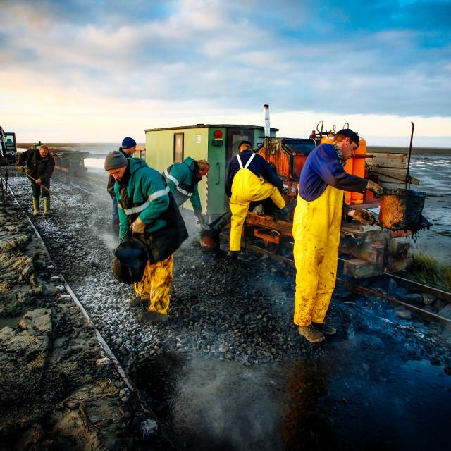 """coastal protection on the north sea"" stock image"
