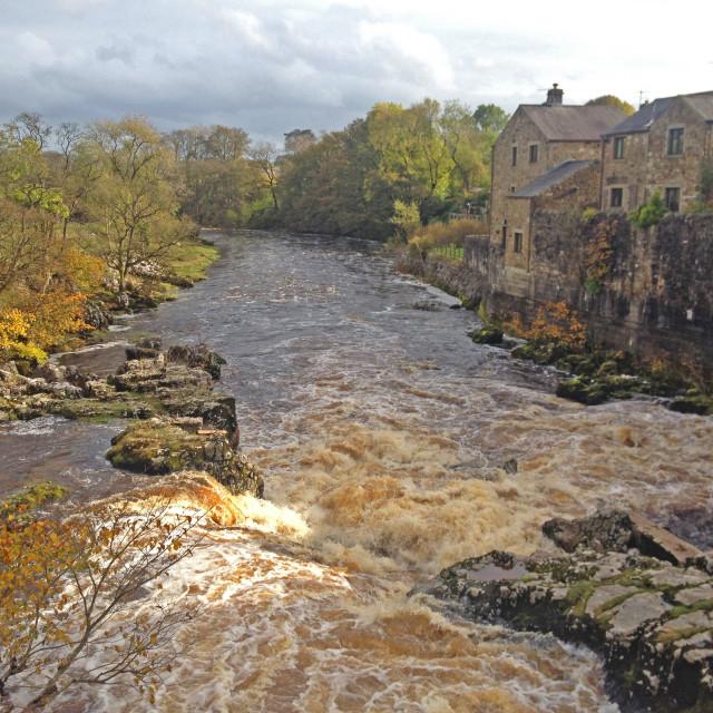 """Linton Falls North Yorkshire"" stock image"