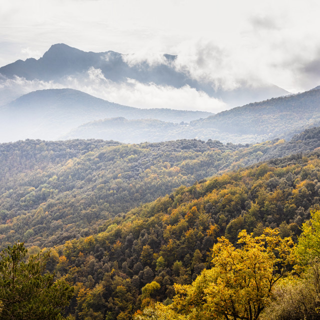 """Autumn picture from Spanish mountain Montseny"" stock image"