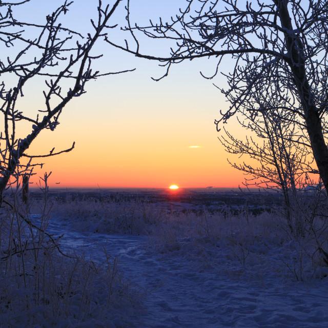 """Wintry sunrise"" stock image"