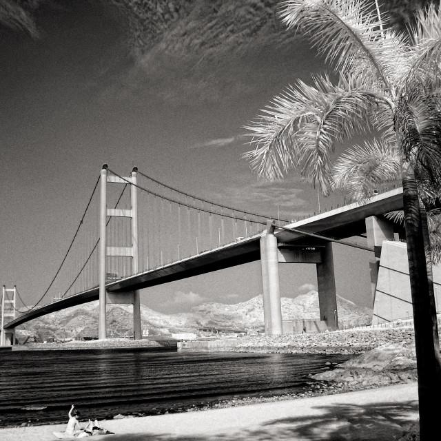 """""""Tsing Ma Bridge, Hong Kong"""" stock image"""