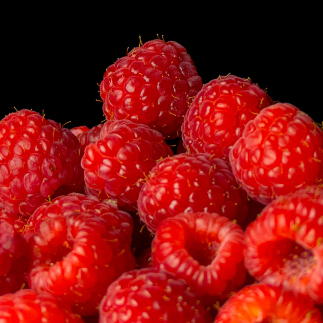 """Raspberries"" stock image"