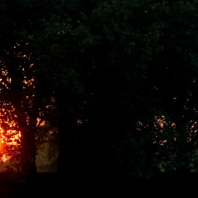"""Sunset, The Embankment, Nottingham"" stock image"