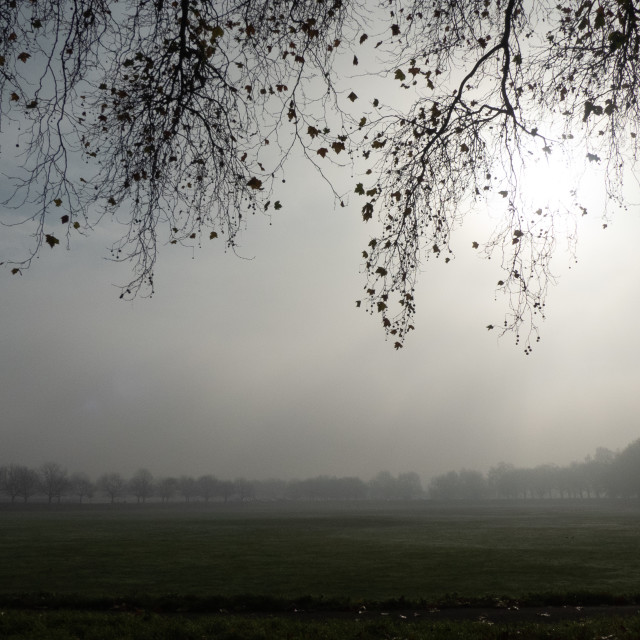 """Mist field, The Embankment, Nottingham"" stock image"