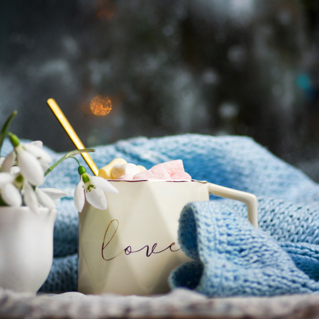"""""""Hot chocolate with marshmallows in a cup and snowdrop flowers"""" stock image"""