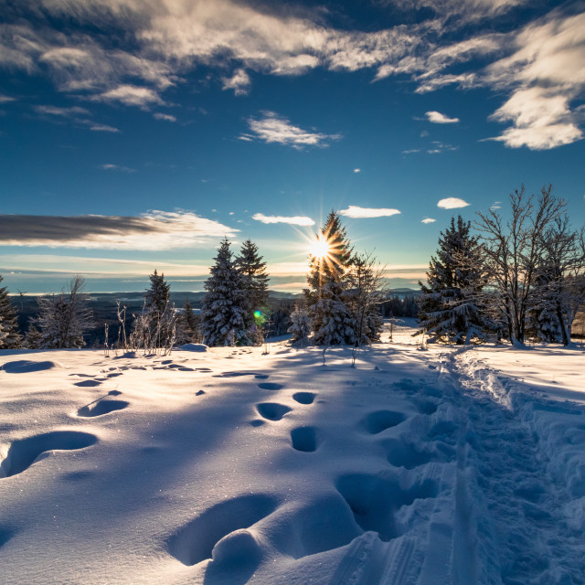 """""""Path in the snow"""" stock image"""