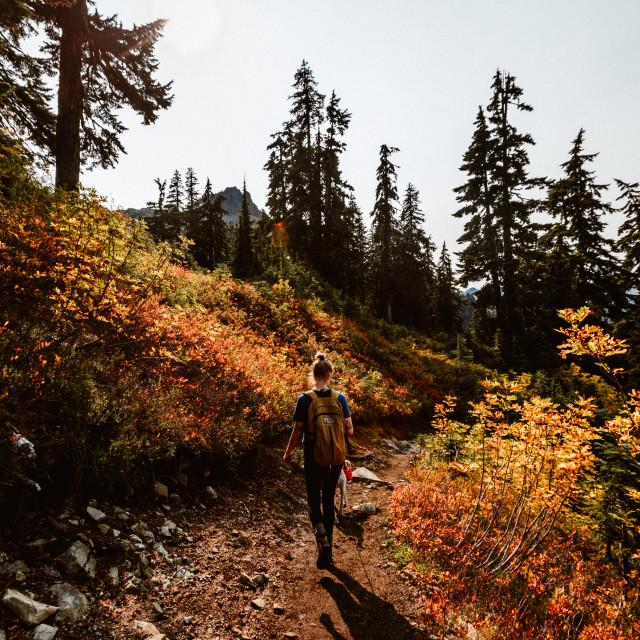"""""""Autumn Hiker"""" stock image"""