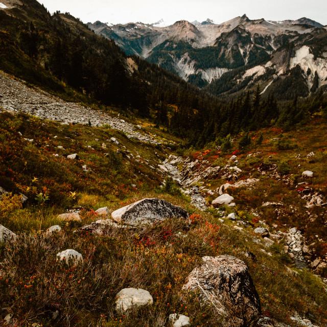 """""""Washington State Scenery"""" stock image"""
