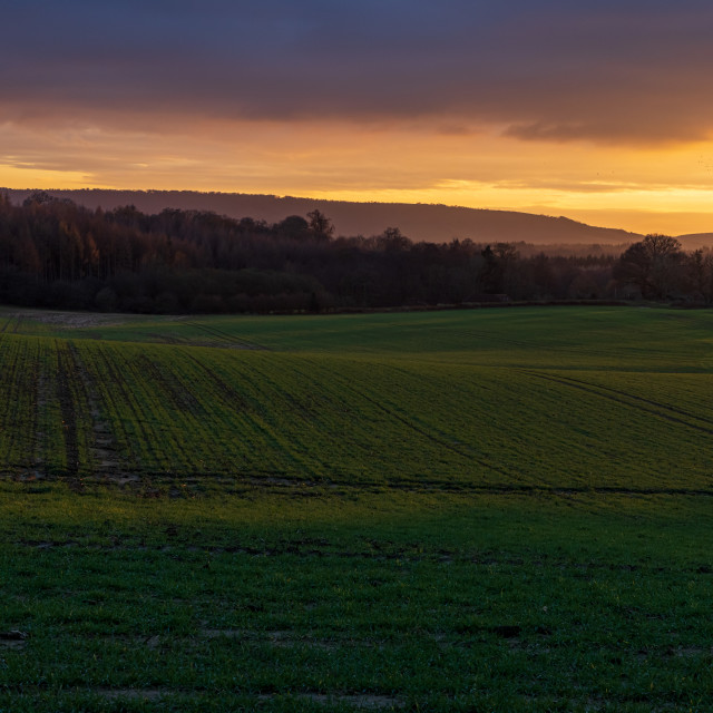 """""""Sunset colours over Sussex farmland"""" stock image"""
