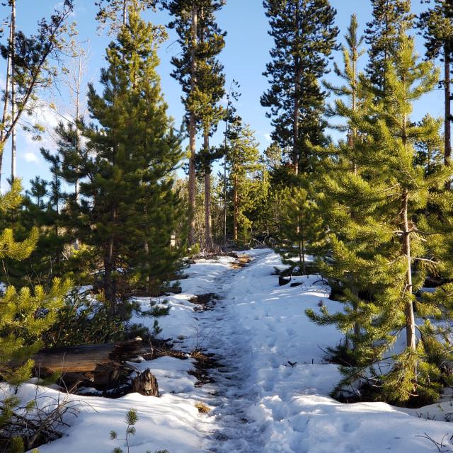 """Snowy Hike"" stock image"