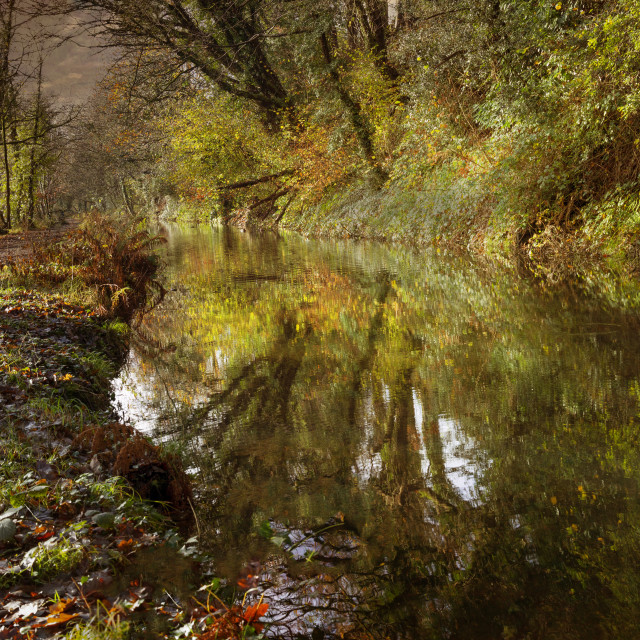 """""""The Clydach to Pontardawe canal"""" stock image"""