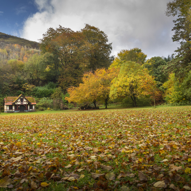 """""""Autumn at Craig-y-Nos Country park"""" stock image"""