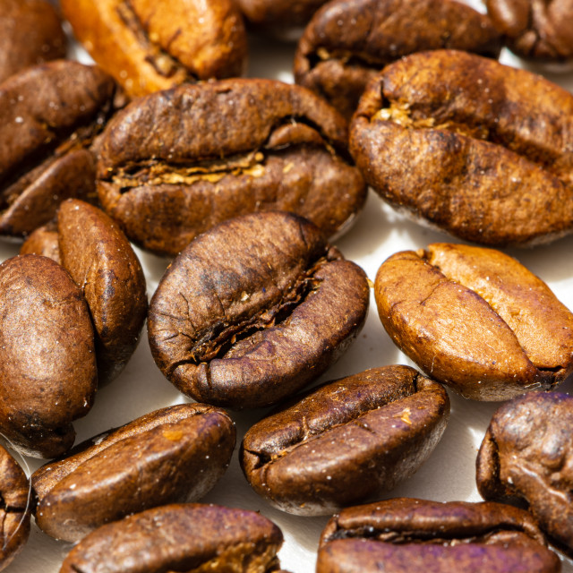 """""""Coffee beans of the Arabica variety, separated and roasted"""" stock image"""