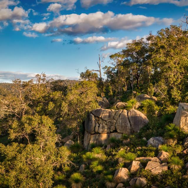 """Darling Range Rocky Hillside"" stock image"