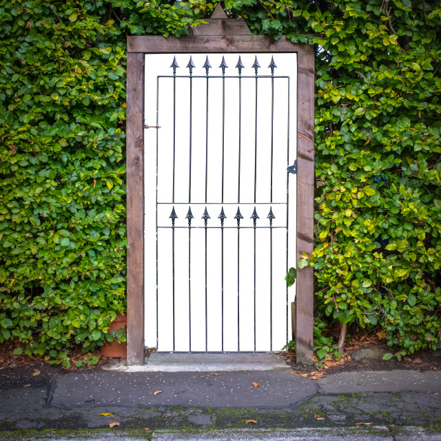 """Gate To Luxury Home With Isolated Background"" stock image"