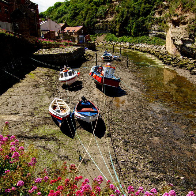 """Fishing Cobbles Moored in Staithes Beck, Staithes, Yorkshire, UK."" stock image"