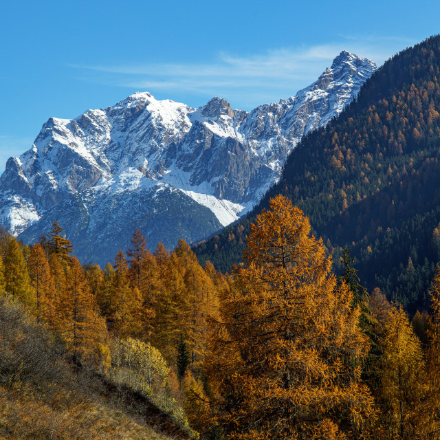 """""""Indian Summer in the mountains"""" stock image"""