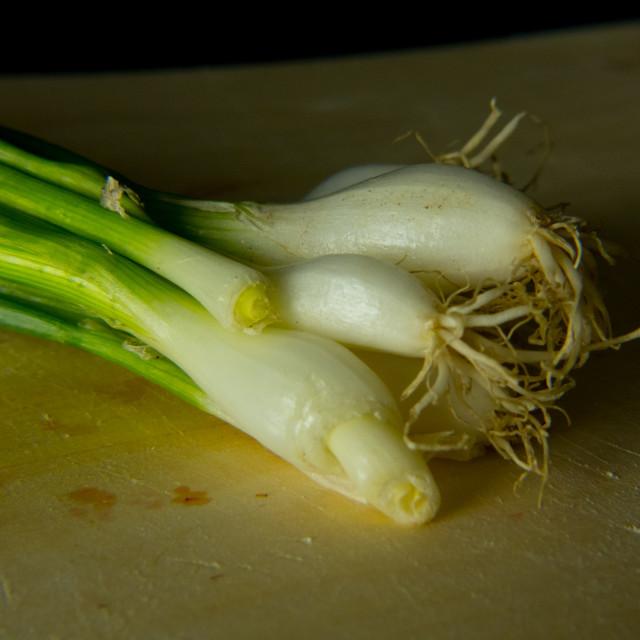 """Still life spring onion"" stock image"