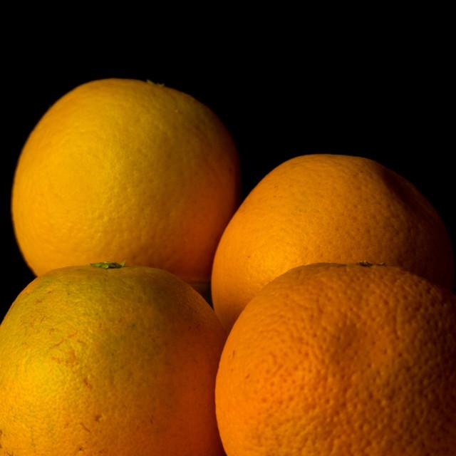 """Still life oranges"" stock image"