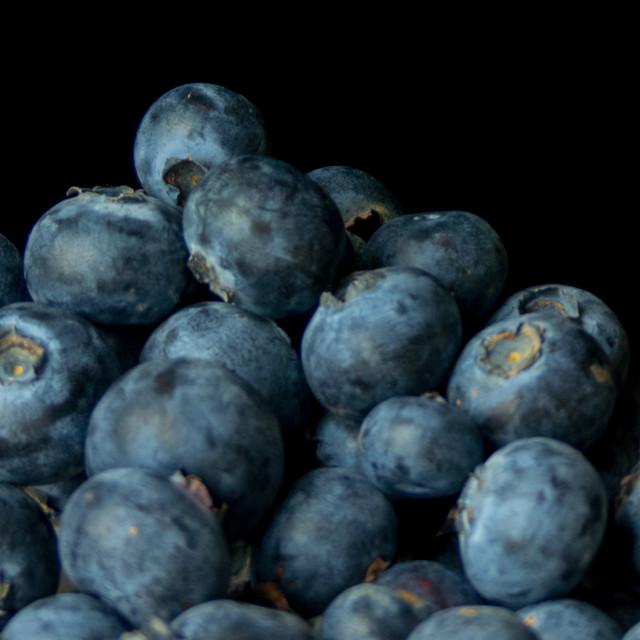 """Still life blueberries"" stock image"