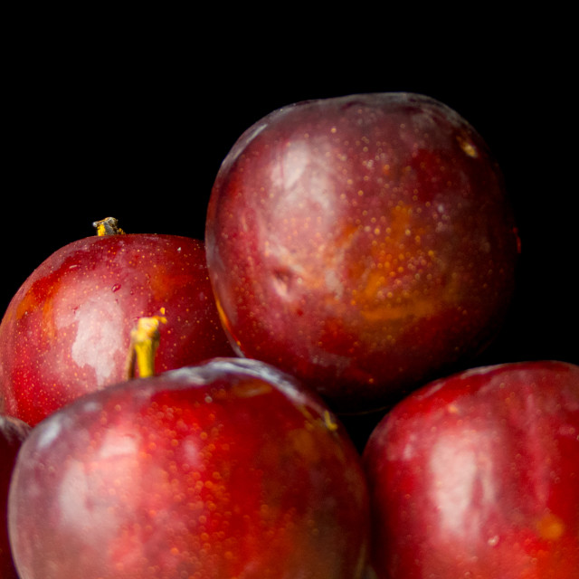 """Still life plums"" stock image"