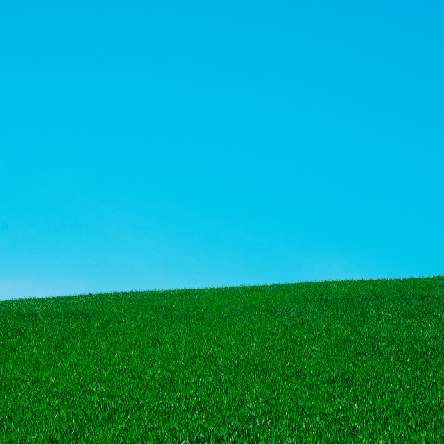 """""""Field and Sky"""" stock image"""