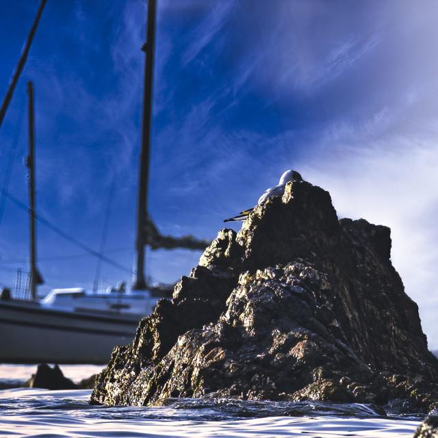 """""""Cawsand at dawn, Cornwall UK."""" stock image"""