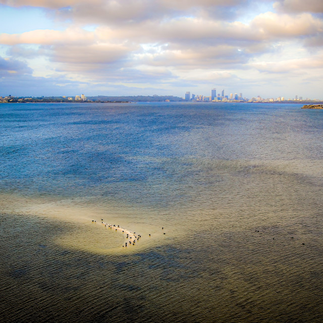 """Birds on Sand Bank"" stock image"