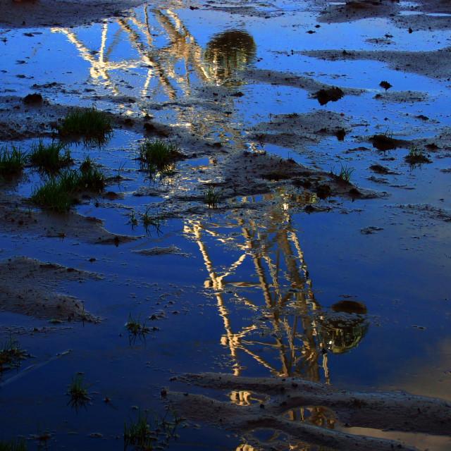 """London Eye reflection in puddle"" stock image"
