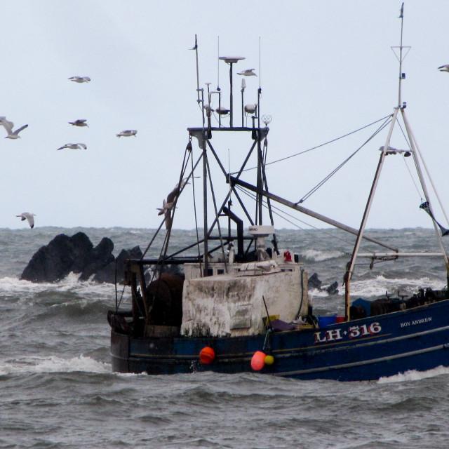 """Trawler in Scotland"" stock image"