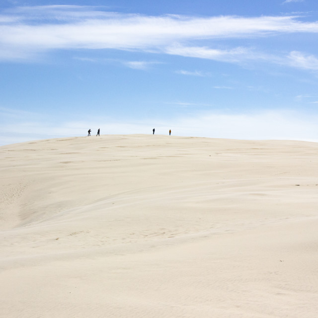 """Trekking on the Danish desert III"" stock image"