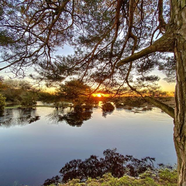 """Ocknell Sunrise"" stock image"