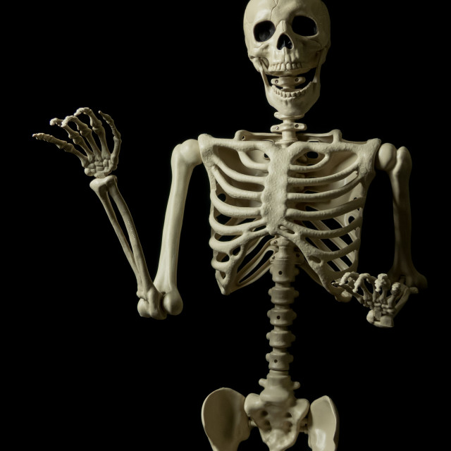 """Skeleton waving"" stock image"