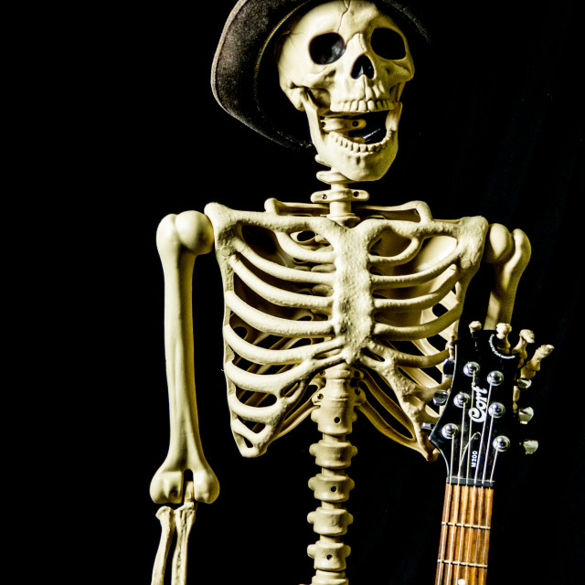 """Skeleton in a hat"" stock image"