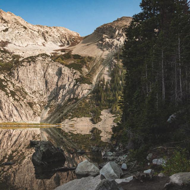 """Snowmass Lake Shoreline"" stock image"