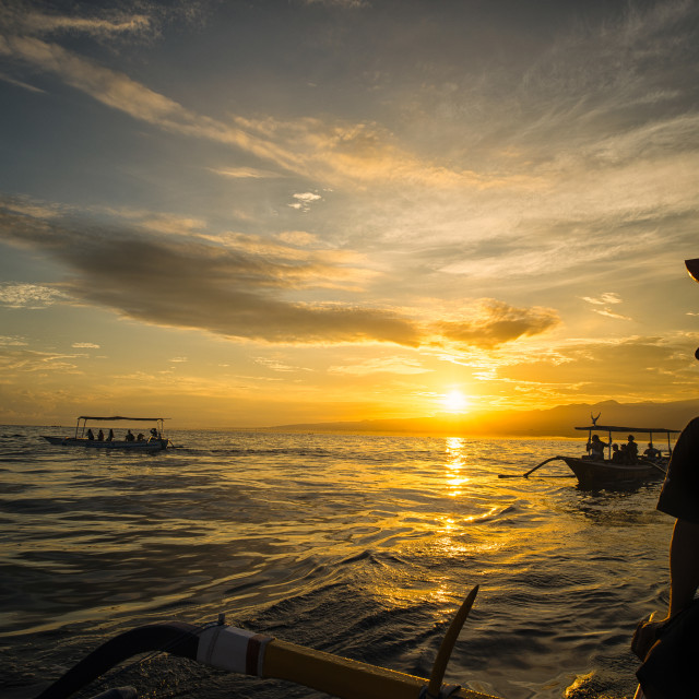 """Dolphin watch in the sunrise"" stock image"