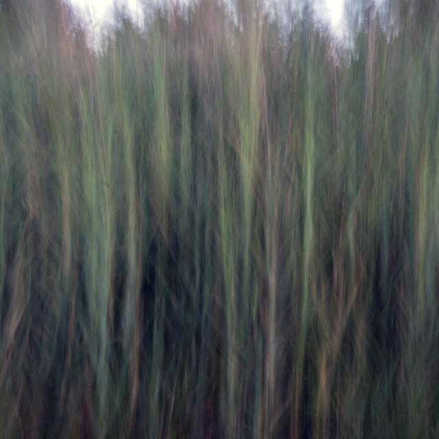 """A Creative Blur"" stock image"