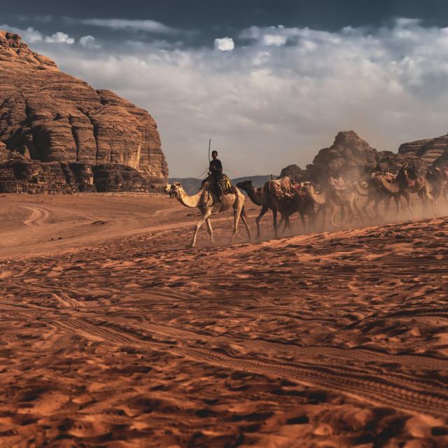 """Beduins in the desert"" stock image"