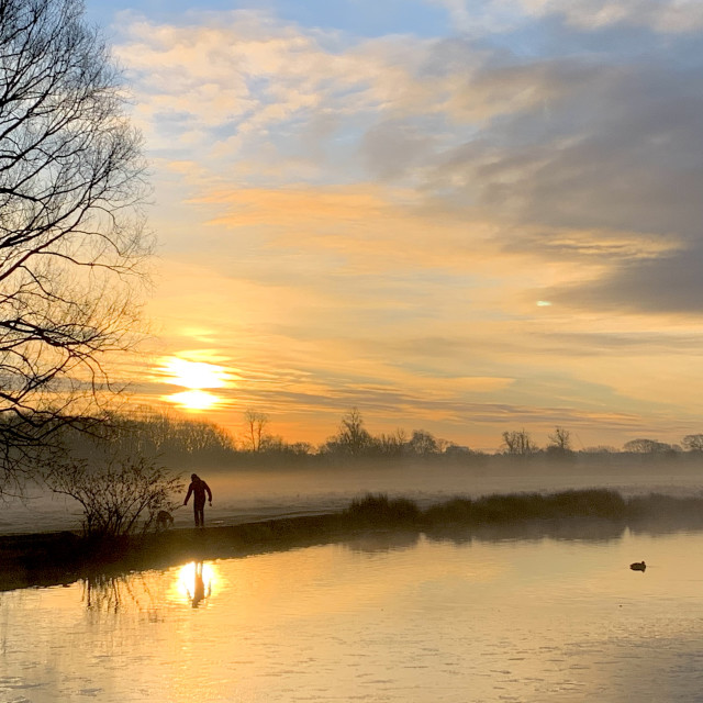 """Sunrise at Bushy Park"" stock image"
