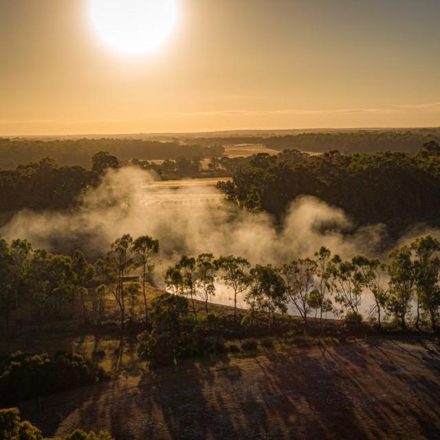 """Metricup Morning Mist"" stock image"
